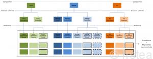Schématisation du plan d'expérience OPTMix. 11 traitements différents sont appliqués correspondant à la combinaison des facteurs composition, scénario sylvicole et herbivorie. Pour chaque traitement 3 répétitions ont été installées soit 33 placettes expérimentales