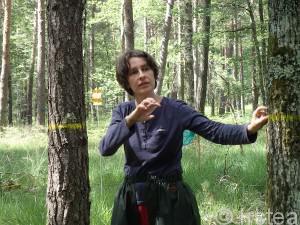 Séminaire forêts mélangées, 9 juin 2015